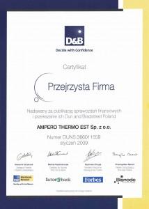 Ampero-PrzejrzystaFirma-2009
